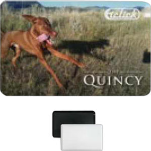 Promotional USB Memory Drives-Quincy-256MB