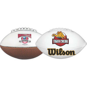 Promotional Footballs-FSFB-FCP