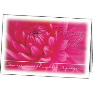 Promotional Greeting Cards-194803