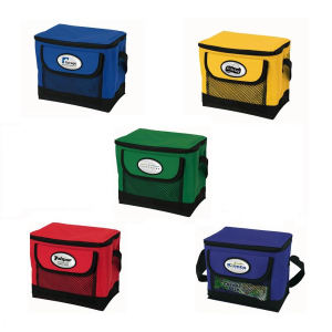 Promotional Picnic Coolers-GR4301