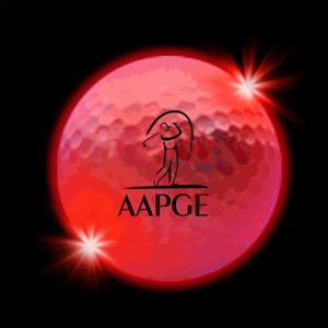 Promotional Golf Balls-LGBRT092