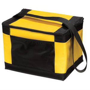 Promotional Picnic Coolers-BG89