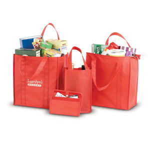Promotional Picnic Coolers-BG745