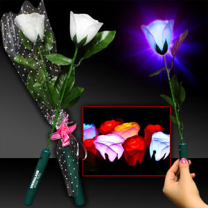 Promotional Garden Accessories-LIT025
