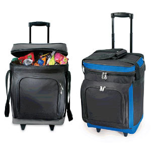 Promotional Picnic Coolers-COOLER G37B