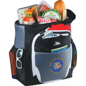 Promotional Backpacks-3860-94