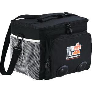 Promotional Picnic Coolers-4200-10