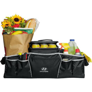 Promotional Picnic Coolers-4550-24