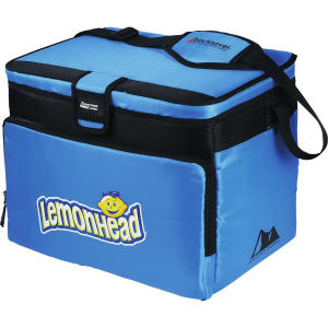 Promotional Picnic Coolers-3860-11