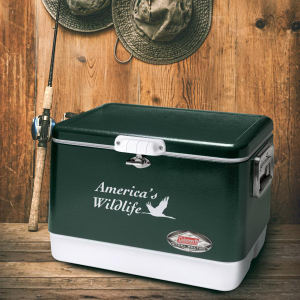 Promotional Picnic Coolers-AC550