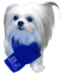 Promotional Pet Accessories-FL100