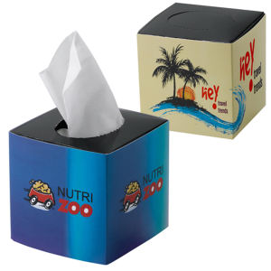 Promotional Tissues/Towelettes-PL-1810