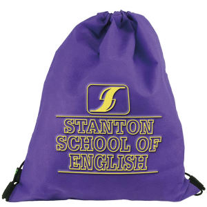 Promotional Backpacks-DSB102