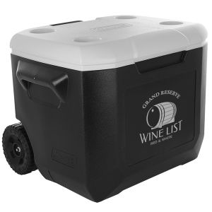 Promotional Picnic Coolers-AC6245