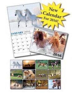 Promotional Wall Calendars-540219U