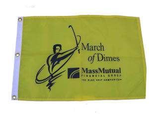 Promotional Banners/Pennants-GF100