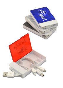 Promotional Translators/Data Organizers-6257