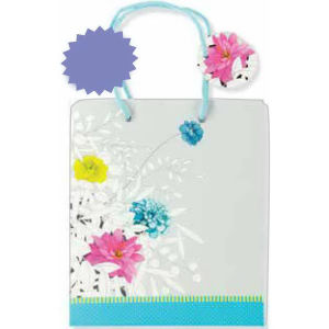 Promotional Bags Miscellaneous-8697