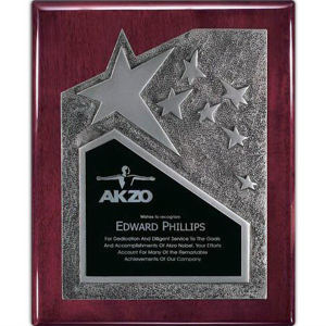 Promotional Plaques-AWP341RS