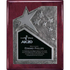 Promotional Plaques-AWP342RS