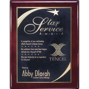 Promotional Plaques-AWP402-1102