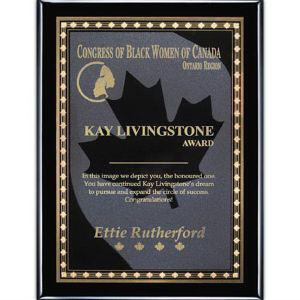 Promotional Plaques-AWP413-3303
