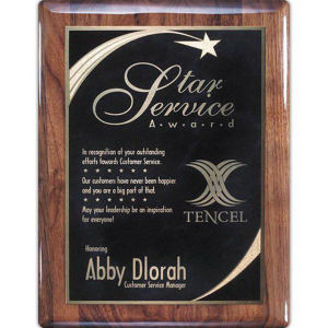 Promotional Plaques-AWP462-1102