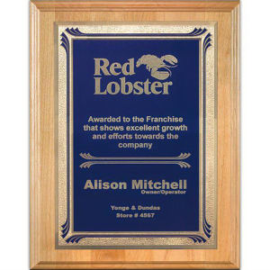 Promotional Plaques-AWP704-4313