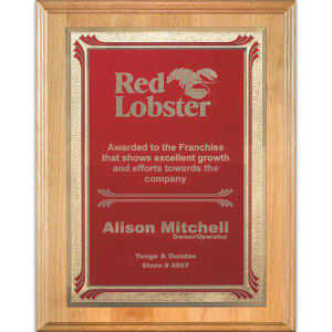 Promotional Plaques-AWP704-4323