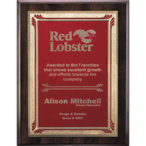 Promotional Plaques-AWP715-4324