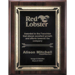 Promotional Plaques-AWP715-4304