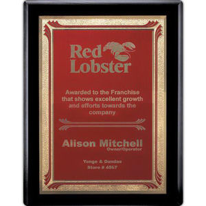Promotional Plaques-AWP724-4323