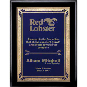Promotional Plaques-AWP725-4314
