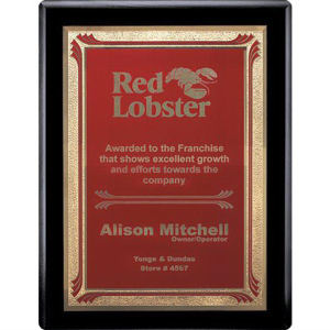 Promotional Plaques-AWP725-4324