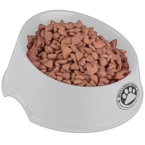 Promotional Pet Accessories-BOWL9