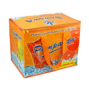 Promotional Picnic Coolers-L5001