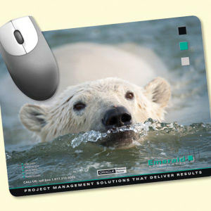 Promotional -NPB Mouse Pad
