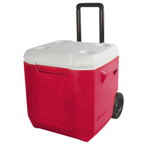 Promotional Picnic Coolers-AC6210