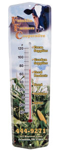 Outdoor or indoor thermometer
