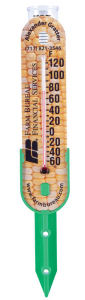 Rain Gauge Thermometer with