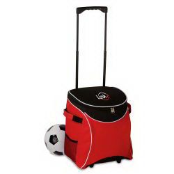 Promotional Picnic Coolers-BG302