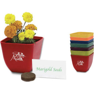 Promotional Seeds, Trees and Plants-410600