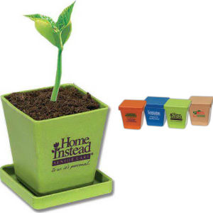 Promotional Seeds, Trees and Plants-410400