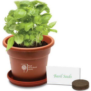 Planter kit with plastic