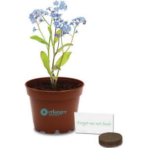Promotional Seeds, Trees and Plants-410610