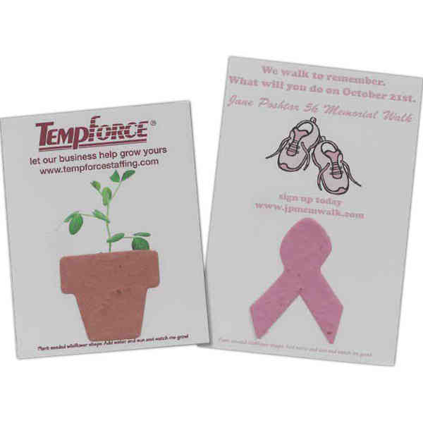 Sprout Tyme - Mailer/postcard