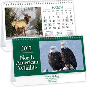Promotional Desk Calendars-DC5091