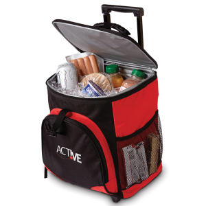 Promotional Picnic Coolers-BG301