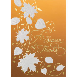 Promotional Greeting Cards-DG1210
