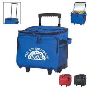 Promotional Picnic Coolers-3001